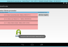 Main Activity Proyecto ClienteProvider